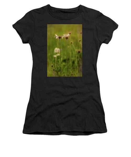 Field Of Flowers 3 Women's T-Shirt (Athletic Fit)