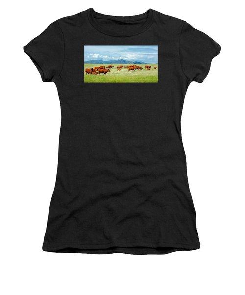 Field Of Reds Women's T-Shirt