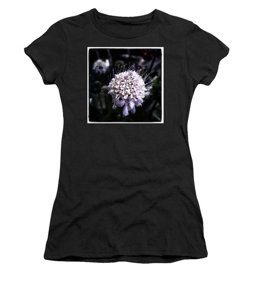 Women's T-Shirt featuring the photograph Field Scabious. A Member Of The by Mr Photojimsf