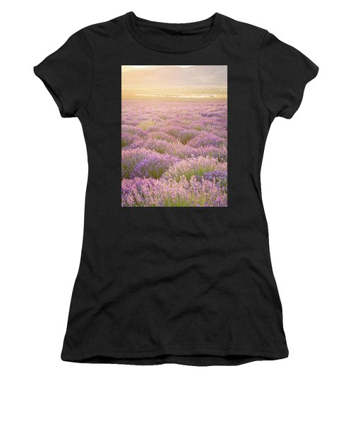 Fields Of Lavender Women's T-Shirt