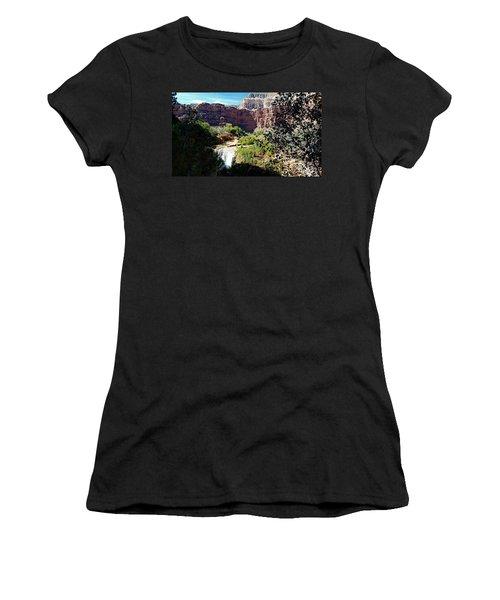 Fifty Falls And Havasupai Falls Havasupai Indian Reservation Women's T-Shirt