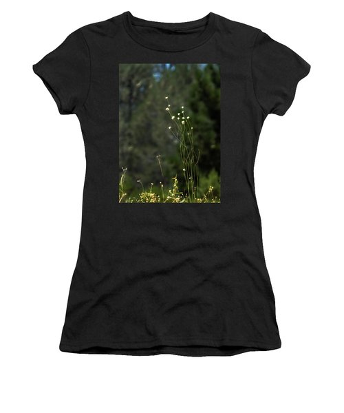 Finnon Wildflowers Women's T-Shirt