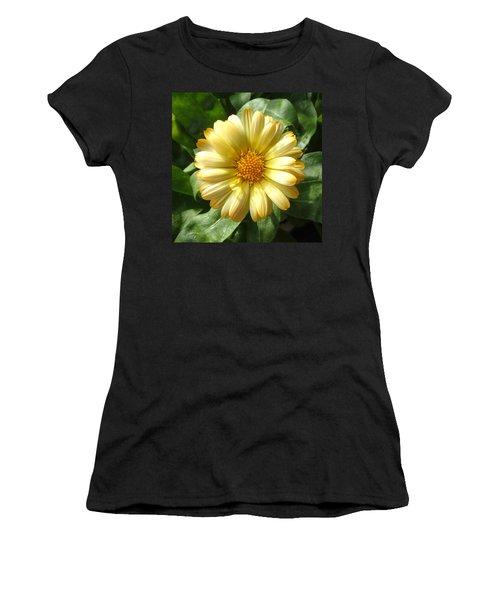 First Sign Of Summer Women's T-Shirt (Athletic Fit)