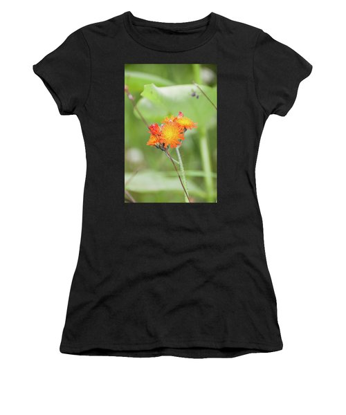 Flp-4 Women's T-Shirt