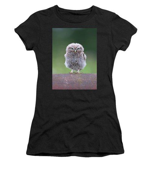 Fluffy Little Owl Owlet Women's T-Shirt