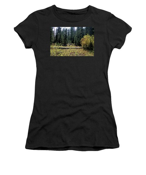 Forest Clearing Women's T-Shirt (Athletic Fit)