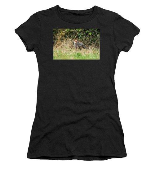 Fox In The Woods Women's T-Shirt
