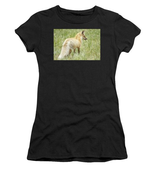 Foxy Lady Women's T-Shirt