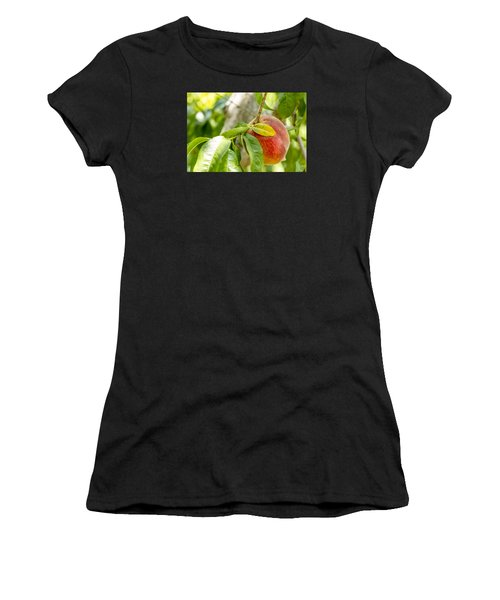 Fresh Peach Hanging In Orchard Women's T-Shirt
