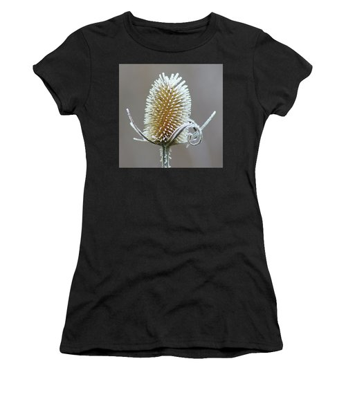 Frosted Teasel Women's T-Shirt