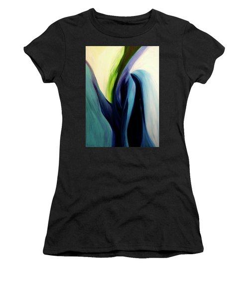Gate To The Garden  By Paul Pucciarelli Women's T-Shirt (Junior Cut)