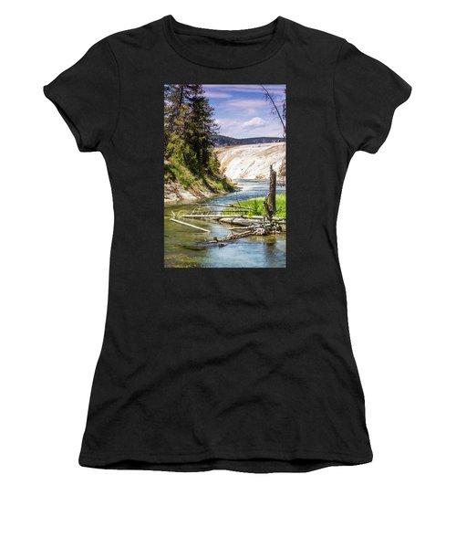 Geyser Stream Women's T-Shirt (Athletic Fit)