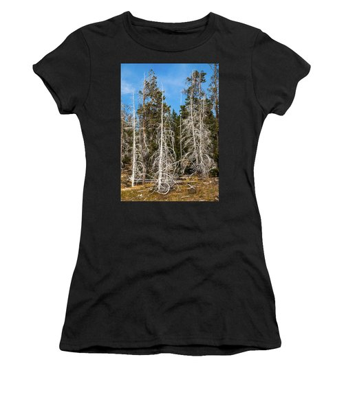 Women's T-Shirt (Athletic Fit) featuring the photograph Ghost Pines At Yellowstone National Park by Lon Dittrick