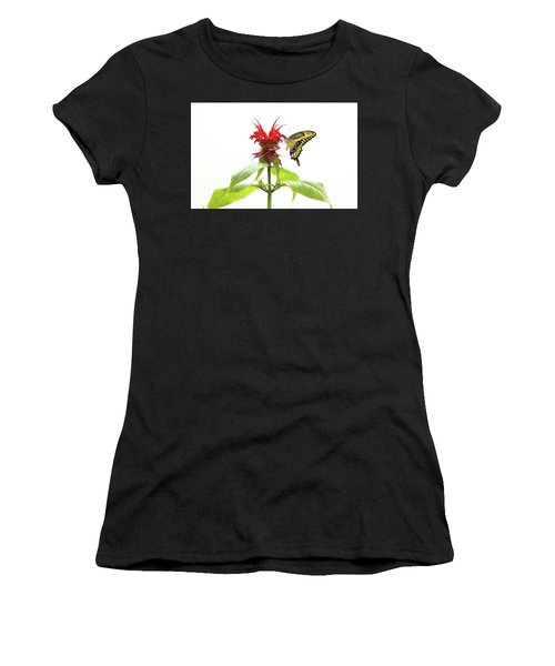 Giant Swallowtail Butterfly Women's T-Shirt