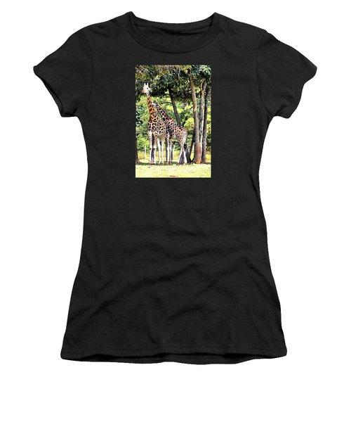 Giraffe Women's T-Shirt (Junior Cut) by James Potts