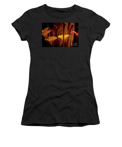 Glass Art Women's T-Shirt (Athletic Fit)