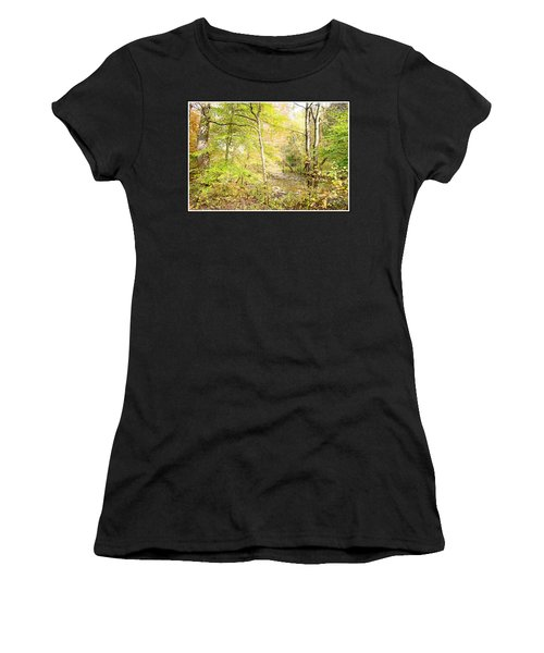 Glimpse Of A Stream In Autumn Women's T-Shirt