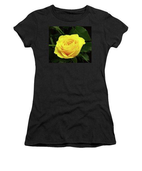 Glorious Yellow Rose Women's T-Shirt