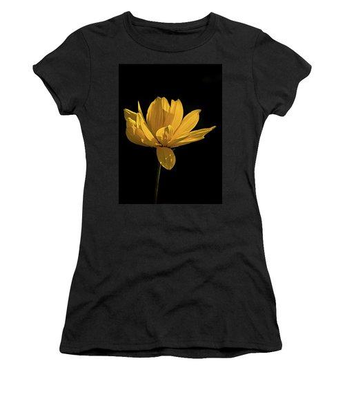 Golden Coreopsis Women's T-Shirt (Athletic Fit)