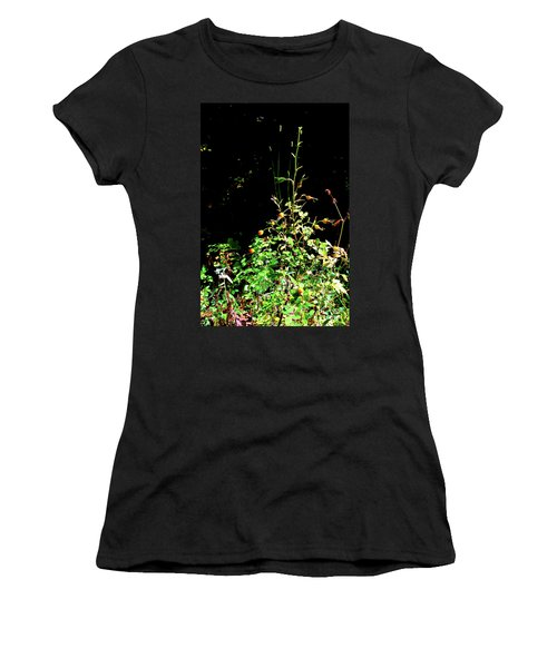 Golden Rose Hips Women's T-Shirt (Athletic Fit)
