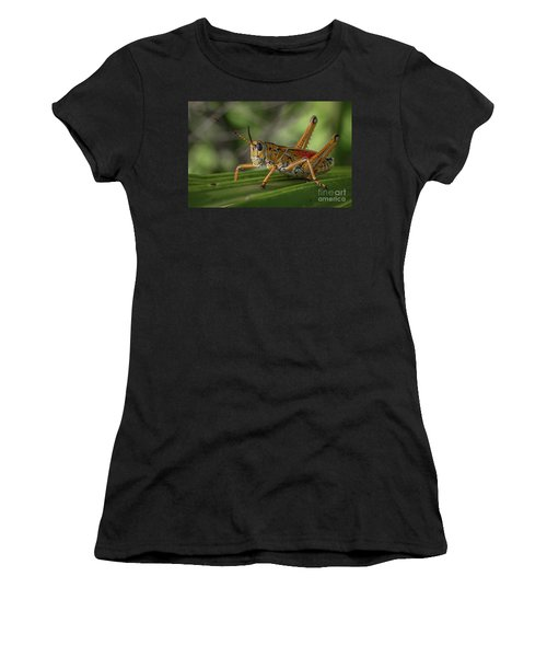 Women's T-Shirt featuring the photograph Grasshopper And Palm Frond by Tom Claud