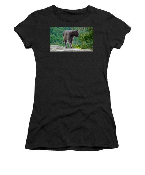 Gray Cat Stalking Women's T-Shirt