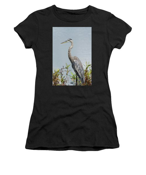 Great Blue Heron #2 Women's T-Shirt