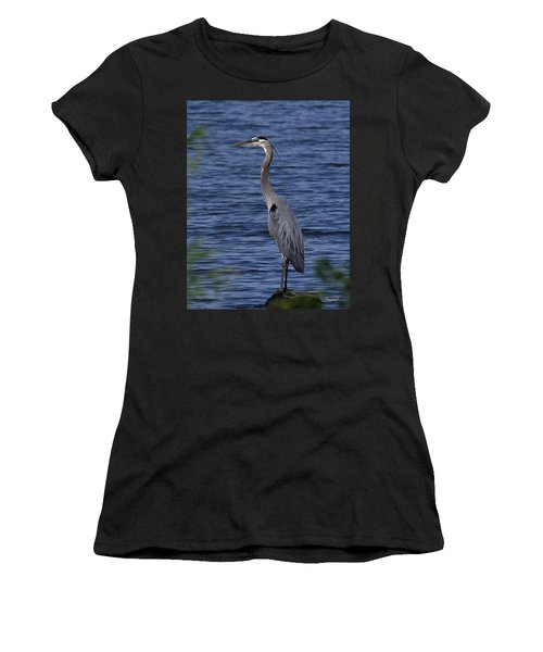 Great Blue Heron Dmsb0001 Women's T-Shirt