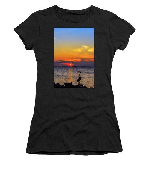 Great Blue Heron Silhouette Women's T-Shirt