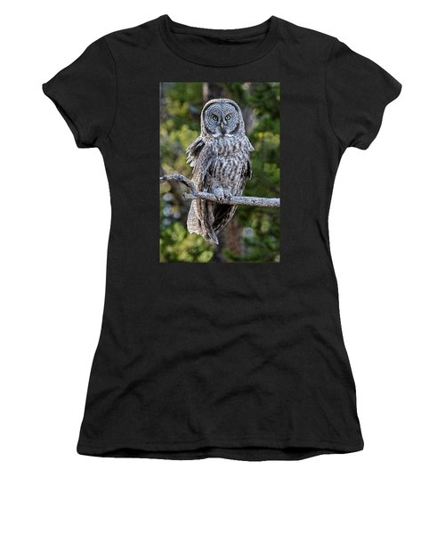 Great Grey Owl Yellowstone Women's T-Shirt