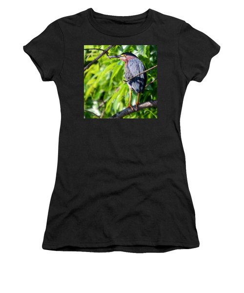 Green Heron Women's T-Shirt (Junior Cut) by Sumoflam Photography