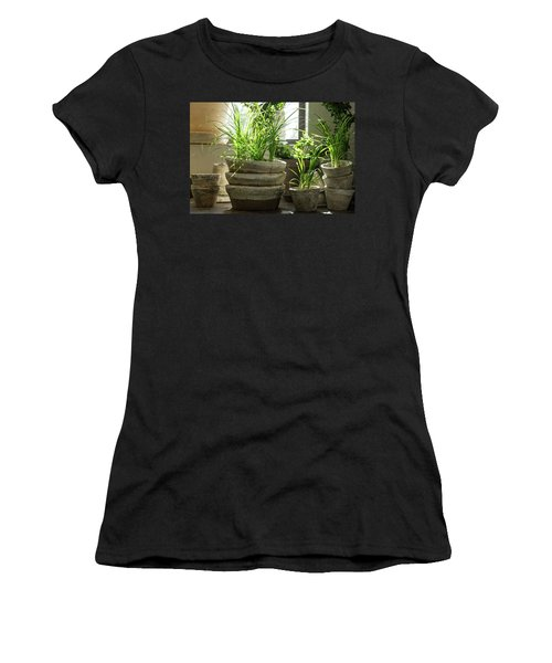 Green Plants In Old Clay Pots Women's T-Shirt (Athletic Fit)
