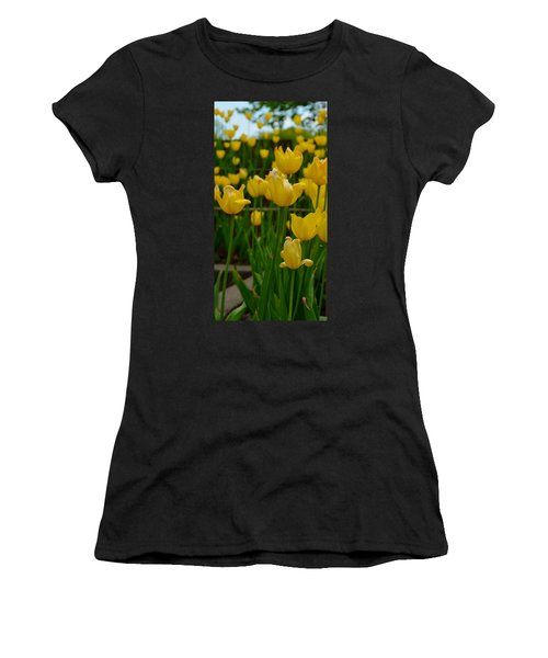 Grouping Of Yellow Tulips Women's T-Shirt