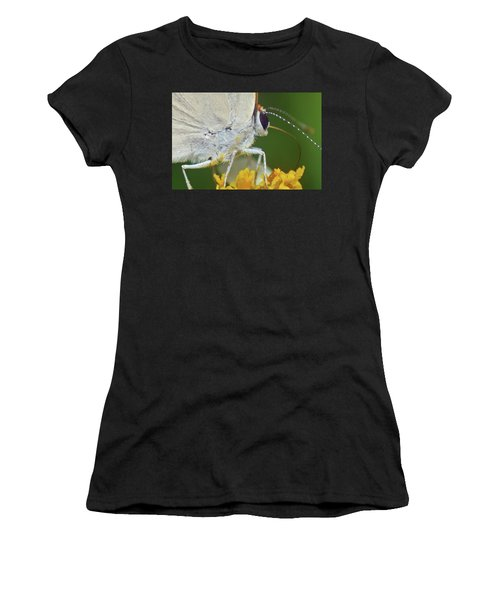 Hairstreak Closeup Women's T-Shirt