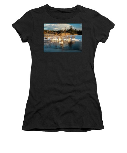 Hard Frosts And Icy Drafts Women's T-Shirt