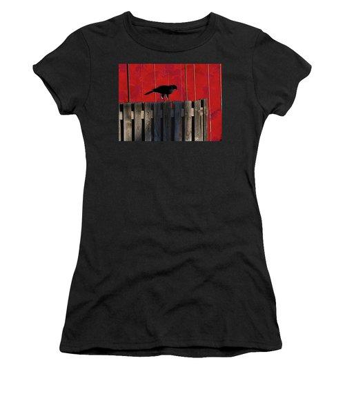 Hawk Women's T-Shirt (Junior Cut) by Don Gradner