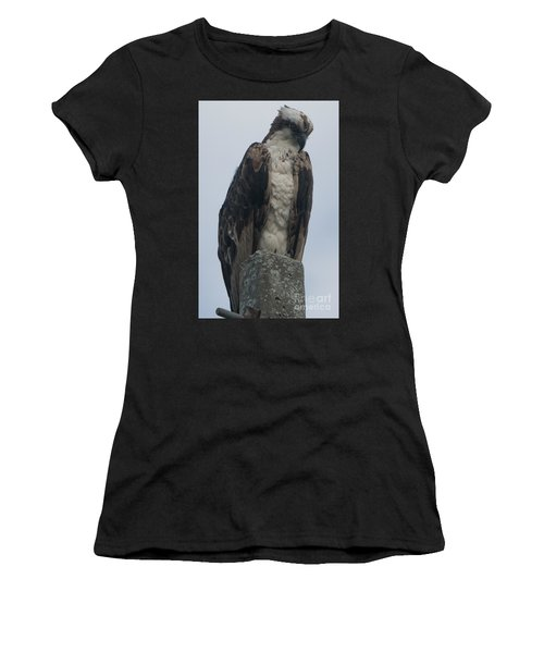 Hawk Facing Down Women's T-Shirt