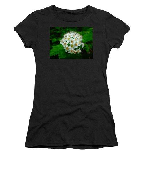 Hawthorn Hearts Women's T-Shirt