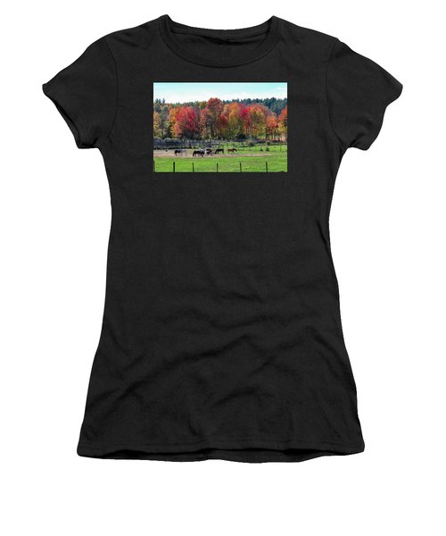 Heritage Farm In Easthampton, Ma Women's T-Shirt