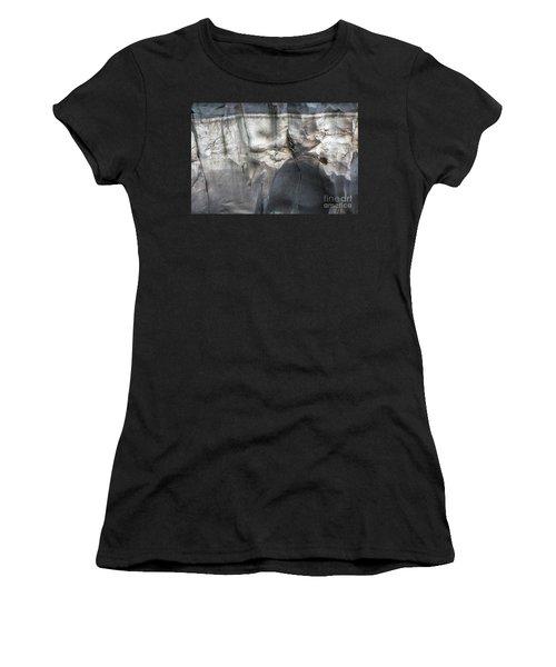 High Water Mark Rock Art By Kaylyn Franks Women's T-Shirt