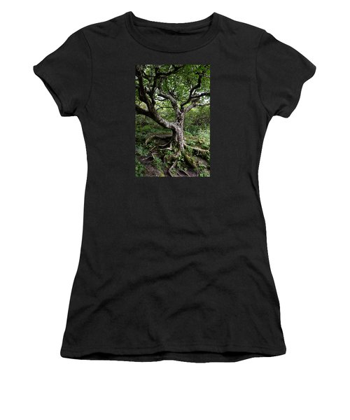Women's T-Shirt (Junior Cut) featuring the photograph Hold Firm by Gary Smith