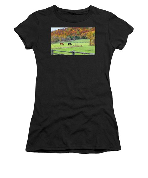 Horses Contentedly Grazing In Fall Pasture Women's T-Shirt