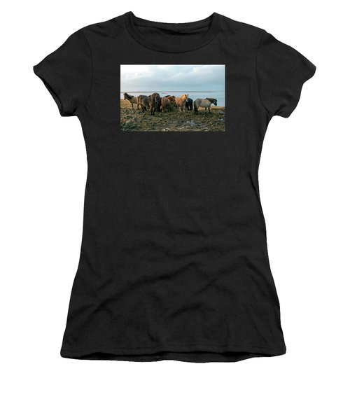 Horses In Iceland Women's T-Shirt