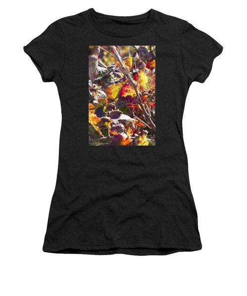 Hot Autumn Colors In The Vineyard 02 Women's T-Shirt