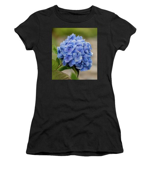 #hydrangea In Blue Women's T-Shirt