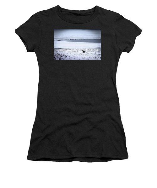 Icelandic Horse Women's T-Shirt