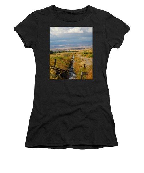 Idaho Stream Women's T-Shirt (Athletic Fit)