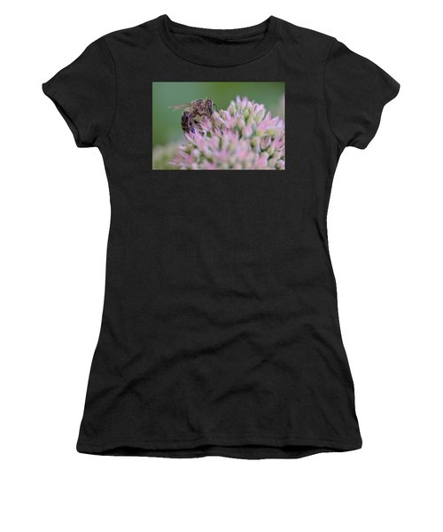 In Search Of Nectar Women's T-Shirt (Athletic Fit)