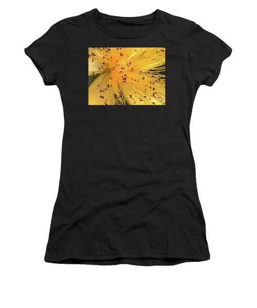 Inside A Flower - Favorite Of The Bees Women's T-Shirt