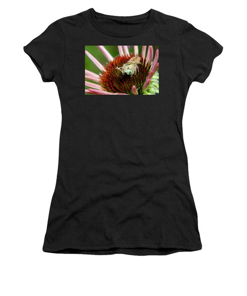 Jumping Spider With Green Weevil Snack Women's T-Shirt